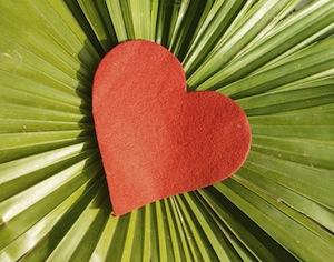 cuore di pezza su foglia verde