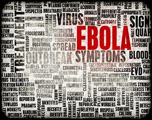 ebola, che cosa fare in caso di sospetti