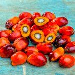 Perché i prodotti biologici contengono olio di palma?