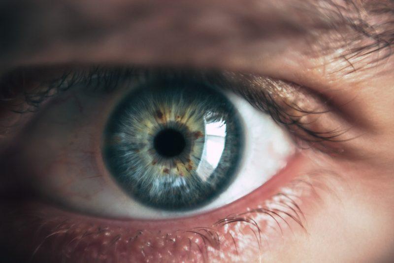 Prevenire l'infarto guardando il fondo dell'occhio: l'ultima frontiera di Google